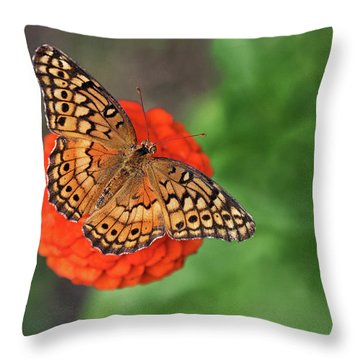 Orange Orange Green Throw Pillow