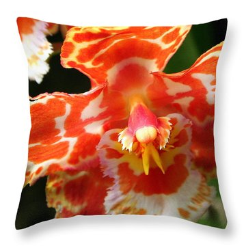 Orange Orchid Throw Pillow by Laurel Talabere