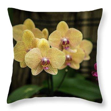 Orange Orchids Throw Pillow
