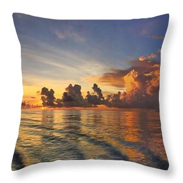 Orange Panorama Throw Pillow