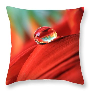 Orange Petals And Water Drops Throw Pillow by Angela Murdock