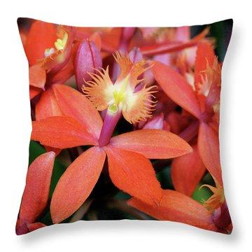Orange Pink Epidendrum Orchid Throw Pillow