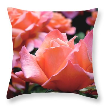 Orange-pink Roses  Throw Pillow by Rona Black
