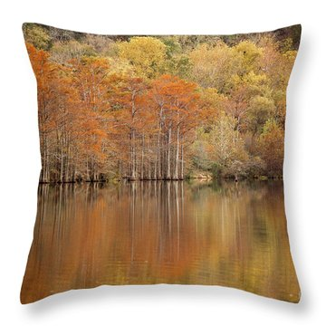 Throw Pillow featuring the photograph Orange Pool by Iris Greenwell