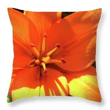 Orange Pop Throw Pillow
