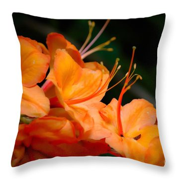 Orange Rhododendron Crush Throw Pillow