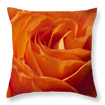 Orange Rose 2 Throw Pillow by Steve Purnell