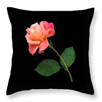 Orange Rose Specimen Throw Pillow