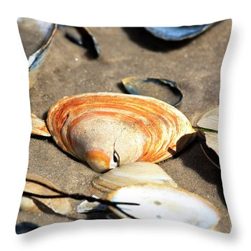 Throw Pillow featuring the photograph Orange Seashell by John Rizzuto