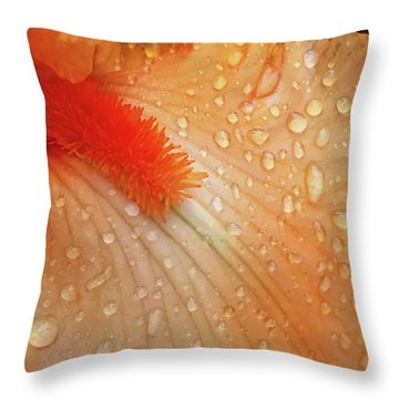 Orange Sherbet Throw Pillow