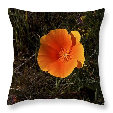 Orange Signed Throw Pillow