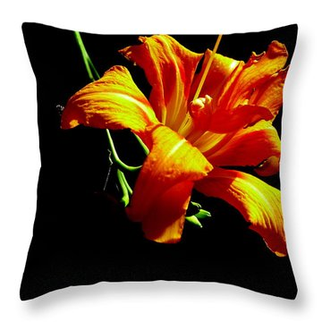 Throw Pillow featuring the photograph Orange Splendor by Fred Wilson