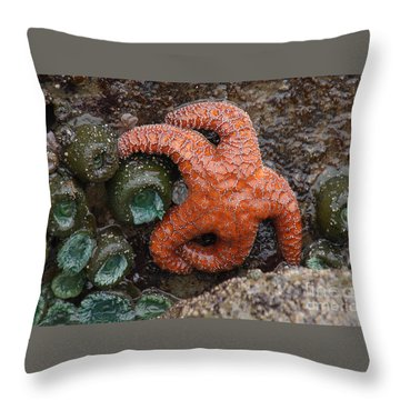 Orange Starfish And Anemonies Throw Pillow
