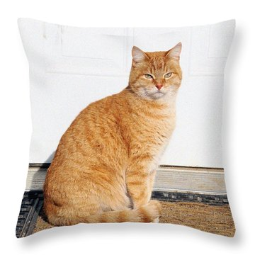 Throw Pillow featuring the digital art Orange Tabby Cat by Jana Russon