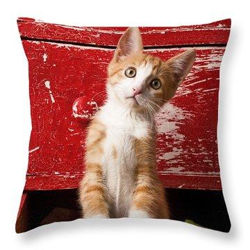 Kitty Cat Throw Pillows