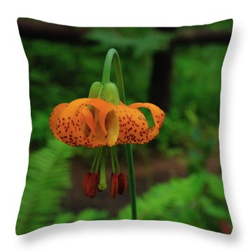 Throw Pillow featuring the photograph Orange Tiger Lily by Tikvah's Hope