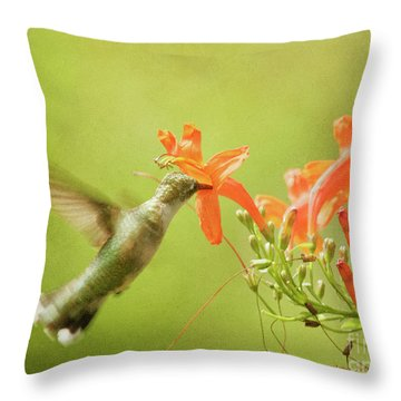 Throw Pillow featuring the photograph Orange Treat by Charles McKelroy