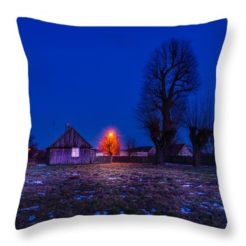 Throw Pillow featuring the photograph Orange Tree by Dmytro Korol