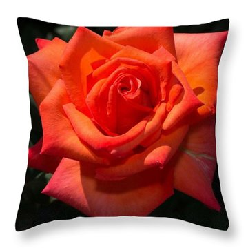 Orange Tropicana Rose  Throw Pillow by Michael Moriarty