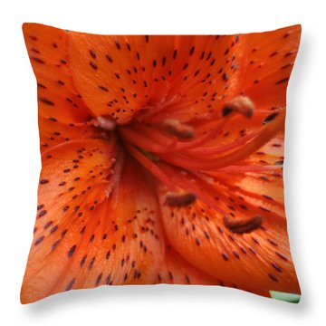Orange Trumpet Throw Pillow