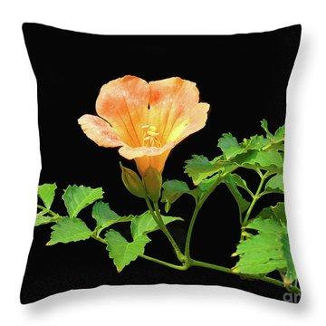 Orange Trumpet Flower Throw Pillow