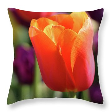 Orange Tulip In Franklin Park Throw Pillow