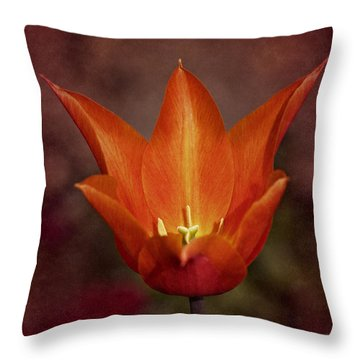 Throw Pillow featuring the photograph Orange Tulip by Richard Cummings
