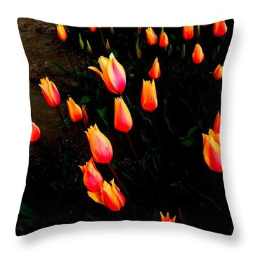 Orange Tulips Throw Pillow by Karen Molenaar Terrell