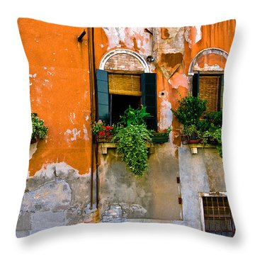 Orange Wall Throw Pillow