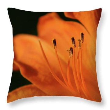 Orange Wave 3096 H_2 Throw Pillow