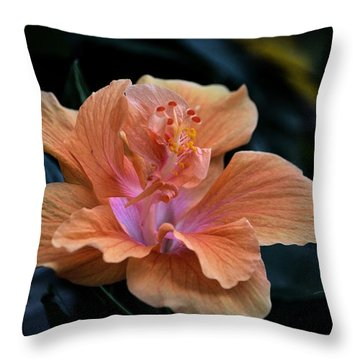 Orangecicle Throw Pillow