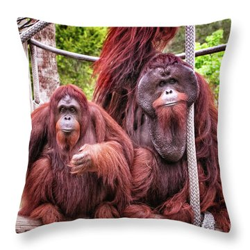 Orangutan Couple Throw Pillow by Stephanie Hayes