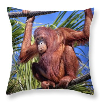 Orangutan On Ropes Throw Pillow