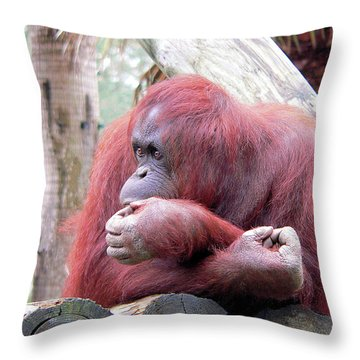 Orangutang Contemplating Throw Pillow by Rosalie Scanlon