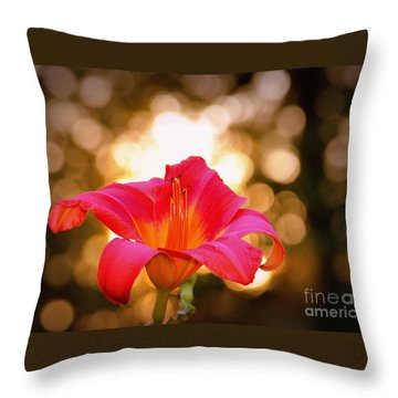 Throw Pillow featuring the photograph Orbs All Around by Lydia Holly