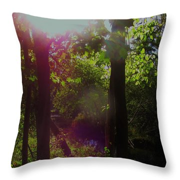 Orbs In The Forest Throw Pillow