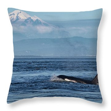 Orca Male With Mt Baker Throw Pillow