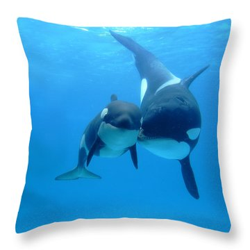 Orca Orcinus Orca Mother And Newborn Throw Pillow