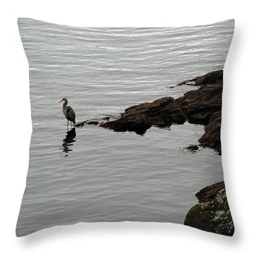 Orcas Island Bird  Throw Pillow