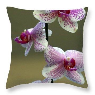 Orchid 16 Throw Pillow by Marty Koch