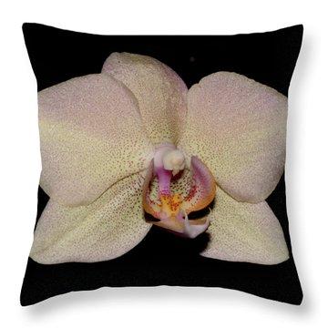Orchid 2016 2 Throw Pillow by Robert Morin