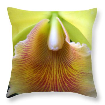 Orchid 21 Throw Pillow by Marty Koch