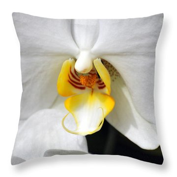 Orchid 23 Throw Pillow by Marty Koch