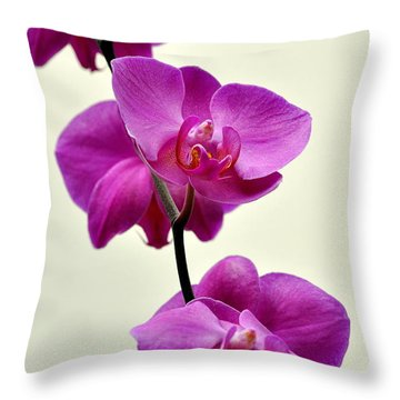 Orchid 26 Throw Pillow by Marty Koch