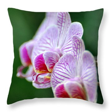 Orchid 30 Throw Pillow by Marty Koch