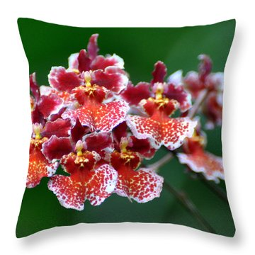 Orchid 31 Throw Pillow by Marty Koch