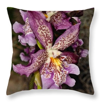 Orchid 347 Throw Pillow