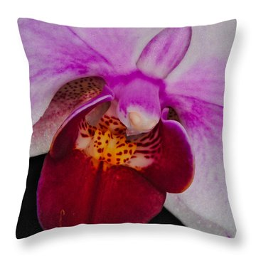 Orchid 376 Throw Pillow