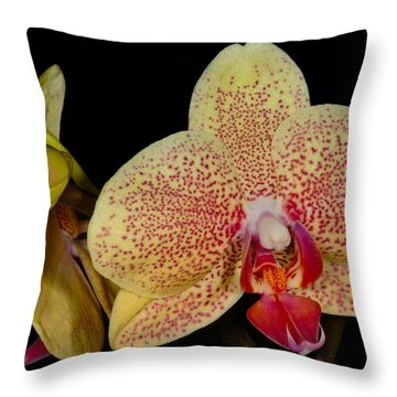 Orchid 377 Throw Pillow