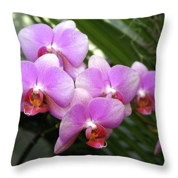 Orchid 4 Throw Pillow by Marty Koch
